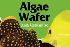 algae wafers,tropical flake,fish food